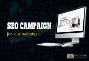 SEO Campaign Package For NEW Websites – Push Your Page Up