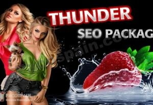 Adult Thunder SEO Ranking Package – Top Results
